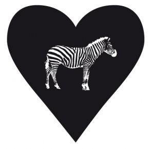 Aus unserem Kleiderschrank - Zebratod