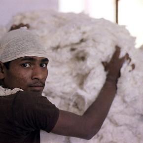 "Preisgekrönte Dokumentation ""100 Prozent Baumwolle - Made in India"" feiert Jubiläum"